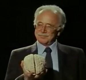 Rolf W Schirm und Gehirn